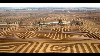 Petani Australia ini melawan erosi tanah dengan seni yang memukau