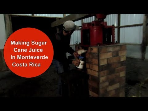 Making and Drinking Sugar Cane Juice in Monteverde, Costa Rica