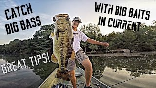 How To Catch HUGE Bass With Big Baits In Current | TylersReelFishing