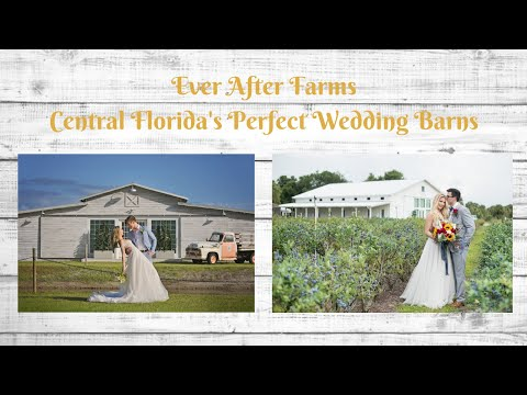 central-florida's-best-wedding-barn-venues