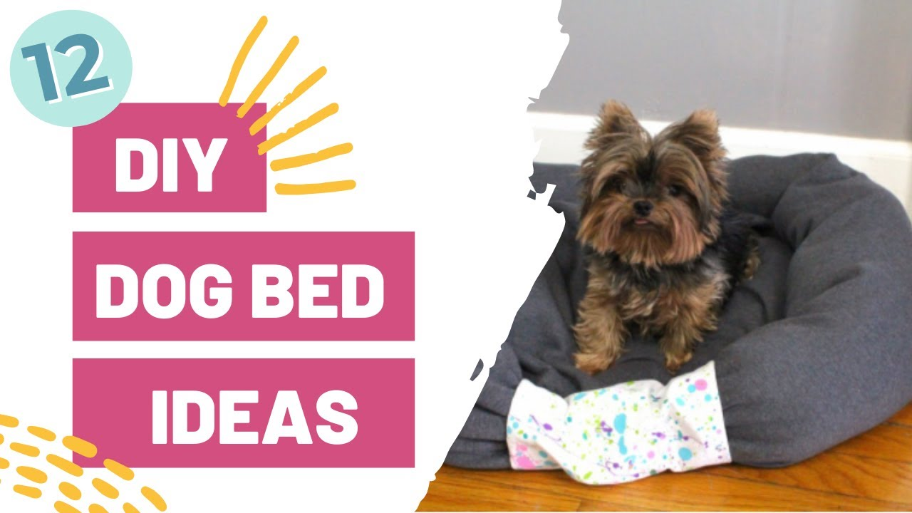 12 DIY Dog Bed Ideas! - YouTube