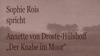 """Annette von Droste-Hülshoff – """"Der Knabe im Moor"""""""