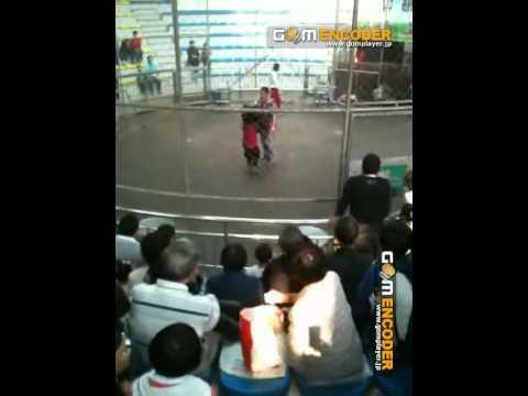 Hangzhou Zoo (杭州動物園)