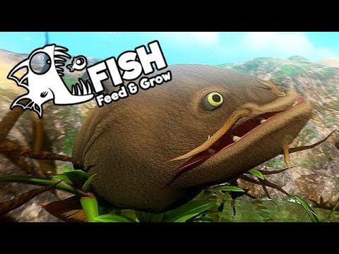 Feed And Grow Fish Gameplay German - Level 200 Catfish Will Ins Meer
