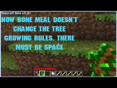 How to grow tree&39;s crops etc in minecraft really quickly using bones