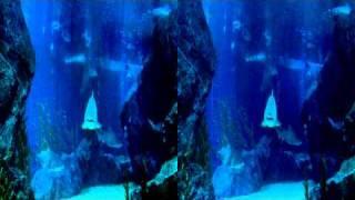 Sharks 3D  Trailer