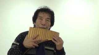 The Lonely Shepherd(외로운 양치기) - Panflute(팬플룻/성대현)