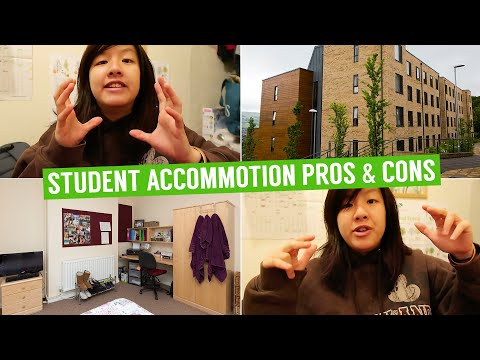 University Halls or Private Accommodation? Pros and Cons | Jia Wei