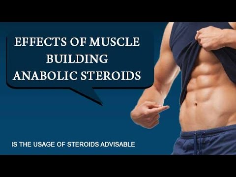 Effects of muscle building anabolic steroids – Is the usage of steroids advisable - Onlymyhealth.com