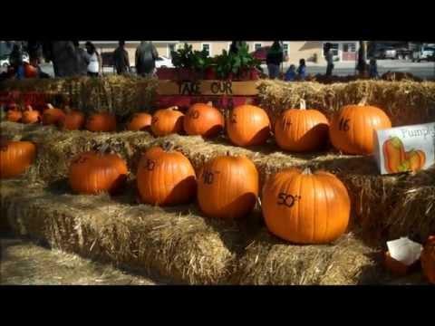 Niceville Pumpkin Patch Festival, Niceville Florida