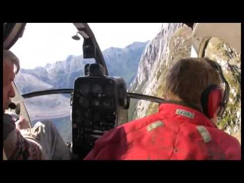 The Last Great Southern Adventure: Helicopter Hunting in Fiordland 1