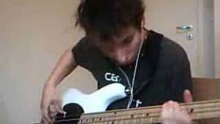 RHCP - Johnny, Kick a Hole in the Sky [Bass Cover]