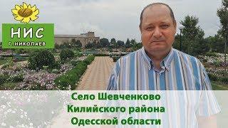 Село Шевченково Ктлийского района Одесской области
