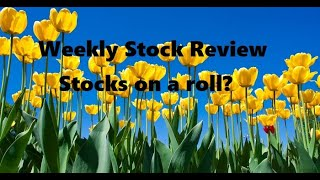 13-17 APR 2020 Weekly Stock Review TSP & ETF's