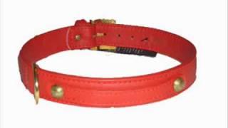 F&K - Die mit dem roten Halsband REMIX