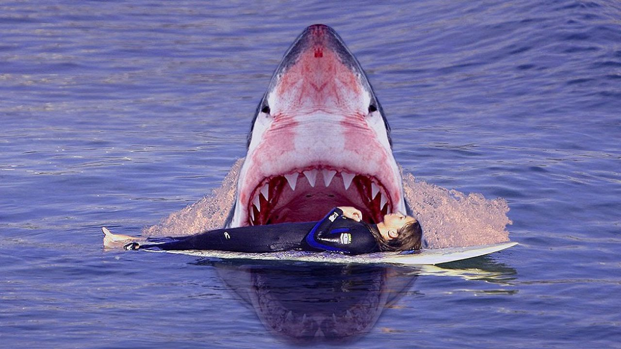 Акула съела 13 летнего серфингиста - YouTube: https://www.youtube.com/watch?v=8K9rjJjinuU