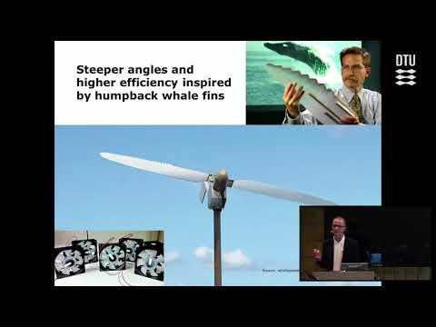 Biomimetics for disruptive conceptualization in Industry