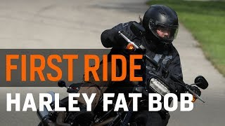 Harley Iron 883 Video Review