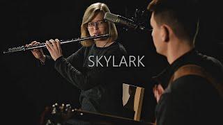 Skylark - Andrea Šulcová & David Fiedler (cover)