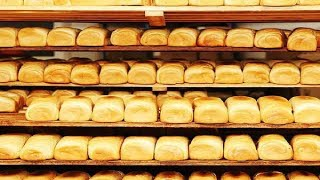 How To Start Bakery Business In Nigeria; Business Plan
