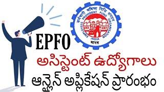 EPFO recruitment 2019 in telugu,how to apply epfo assistant jobs online in telugu