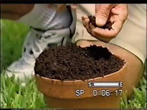 Compost - Dirt Doctor, Howard Garrett