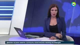 Ролик телеканала «МИР» с черным лабрадором взорвал интернет