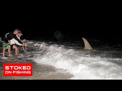 Giant Shark Fishing from the Beach In Florida | Part 2
