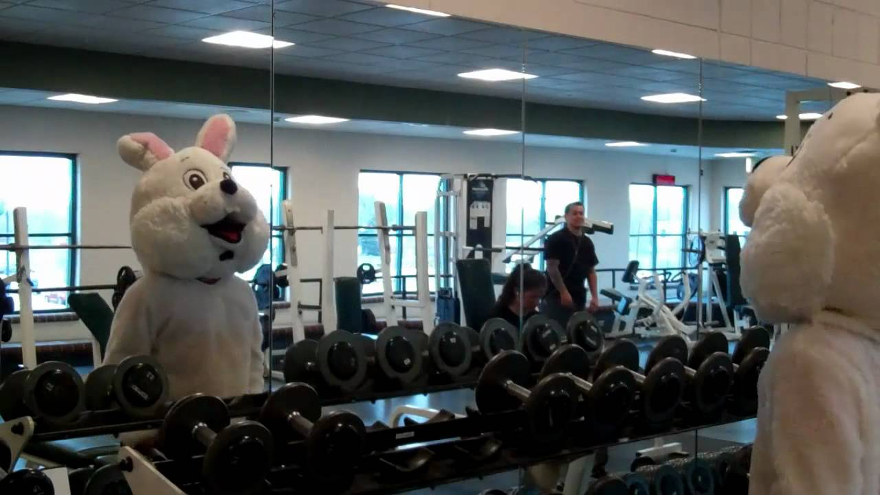 Jwood Easter Bunny Workout Fat Loss Youtube