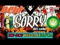 Lagu Reggae Papua Terbaru 2019 Sorry Xd12 Gank  Metrolagu  Mp3 - Mp4 Download