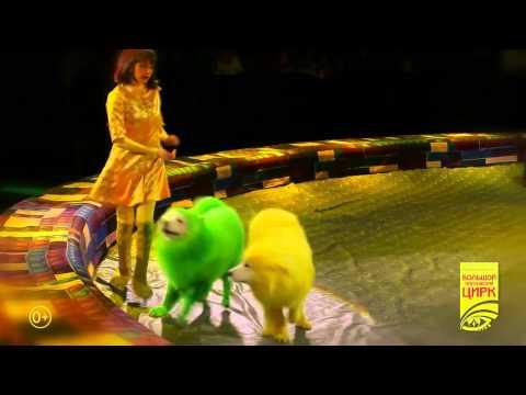 Цирковое представление «Конструктор» в Цирке на Проспекте Вернадского