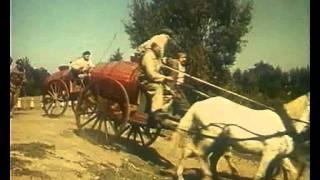 Стежки дорожки 1963 год