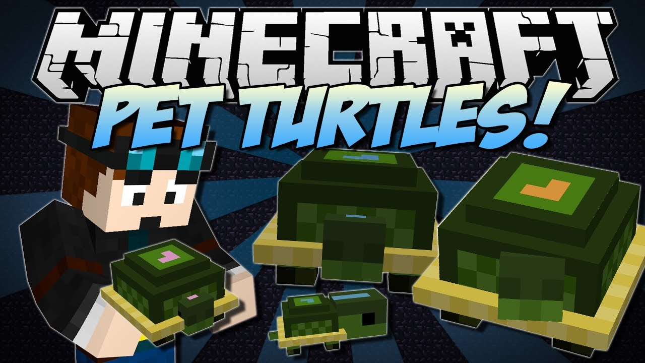 Cute Steven Universe Wallpaper Minecraft Pet Turtles Cute Useful Little Companions