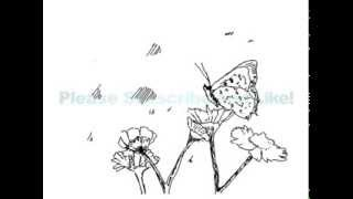 How to draw a Butterfly and Flowers