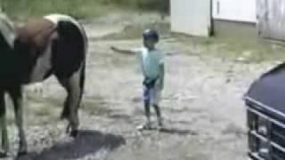 Caballo Golpea A Niño