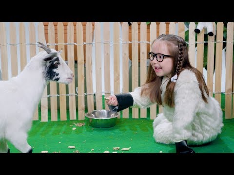 'She's Brielle-iant, Goats!'