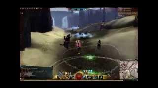 Guild Wars 2-WvW Engi Burst Roamer