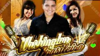 Washington Brasileiro - Fogosa