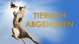 Tierisch abgehoben - Wie Tiere die Schwerkraft überwinden - Trailer [HD] Deutsch / German