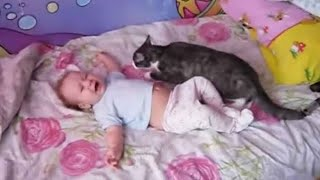 Baby lays crying on the bed and the family cat leaps forward – keep an eye on what happens next