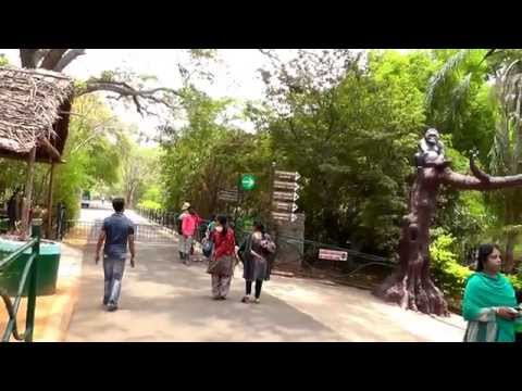 A SHORT VISIT TO MYSORE ZOO HD 23 Apr 14