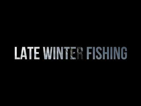 Castaic lake late winter 2019