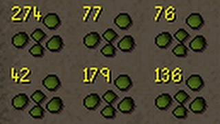 maxing a uim   2228 2277   the gp grind