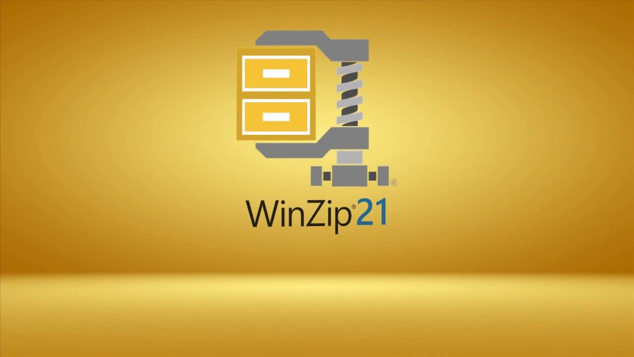 WinZip 21: How to Unzip a File