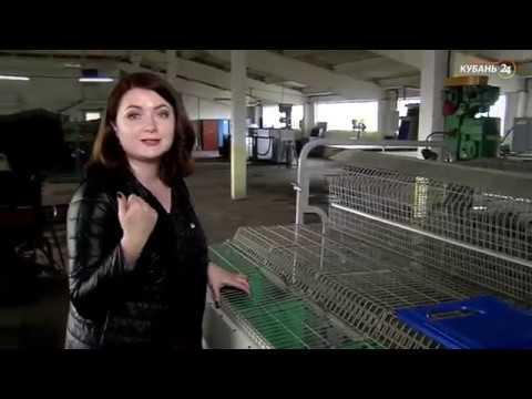 Интервью о содержании кроликов Hykole и производство оборудования Панкроль Юг