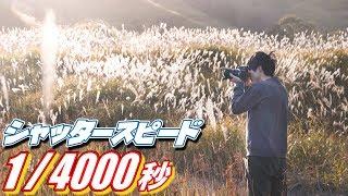 1/4000秒の超高速シャッタースピードで狙う逆光写真がすごい!!