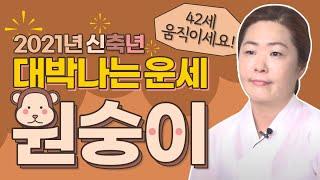 """2021년 초대박나는 '원숭이띠운세' """"대운이 들어왔나~?"""" (92년생 80…"""