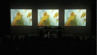 Flowers Into Stardust - Live at YCAM Japan - Christopher Willits