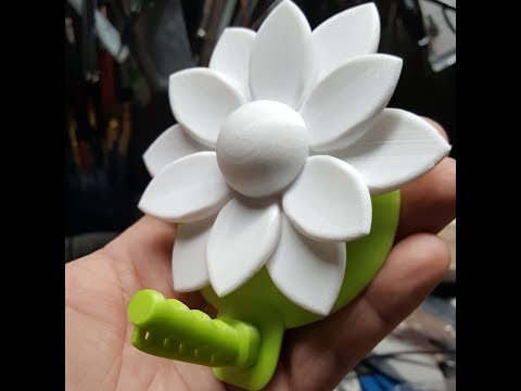 TIME LAPSE 3D PRINTED FLOWER