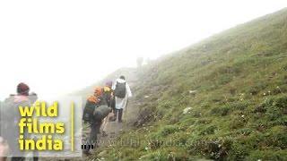 Devotees heading towards en route Homkund - Nanda Devi Raj Jat Yatra